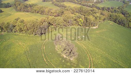 An Aerial View Of Several Agriculture Fields With Tractor Lines.