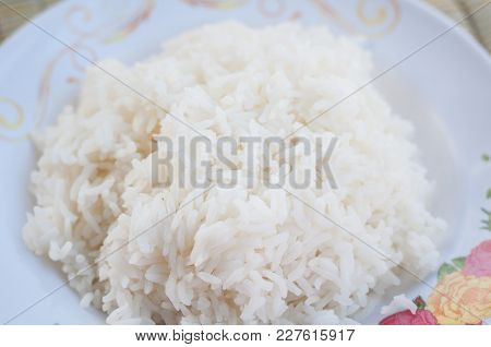 Close Up Steamed Rice Uncooked White On Dish, Thai Hom Mali Rice