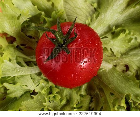 Red Juicy Tomato On Green Lettuce Leaves