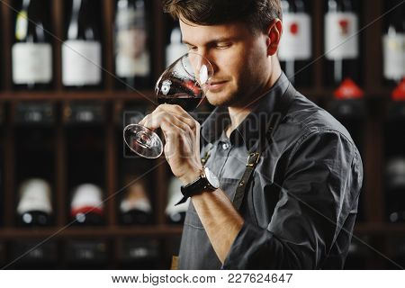 Sommelier Smelling Flavor Of Red Wine In Bokal On Background Of Shelves With Bottles In Cellar. Male