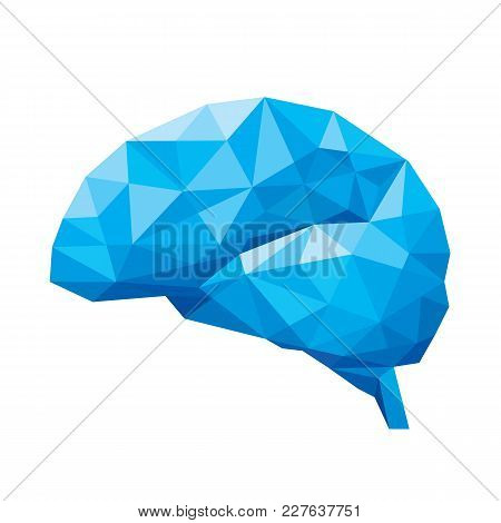 Creative Concept Of The Human Brain Consists Of Blue Polygons, Vector Illustration, Isolated On Whit