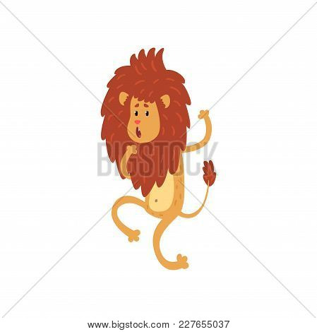 Cute Funny Lion Cub Cartoon Character Walking On Two Legs Vector Illustration Isolated On A White Ba