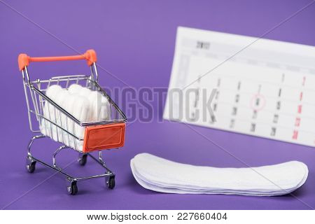 Tampons In Small Shopping Cart, Daily Liners And Calendar On Purple