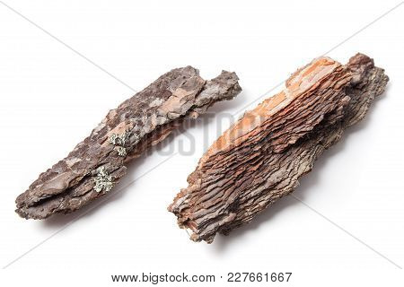 Two Pieces Of Pine Bark Isolated On White.