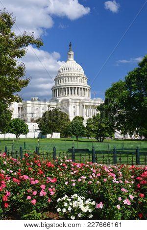 Washington DC in springtime - United States Capitol Building
