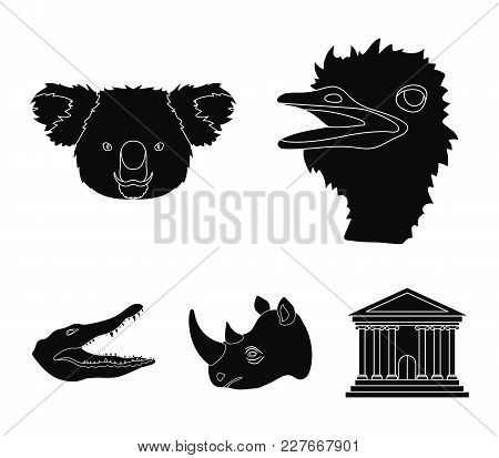 Ostrich, Koala, Rhinoceros, Crocodile, Realistic Animals Set Collection Icons In Black Style Vector