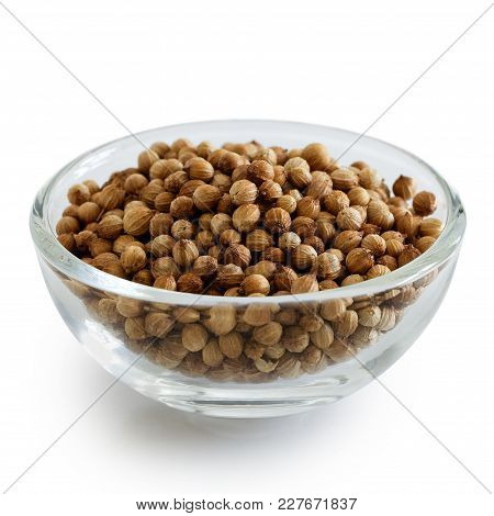 Whole Dried Coriander Seeds In Glass Bowl Isolated On White.