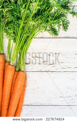 A Bunch Of Carrots. Fresh Carrots Heap With Green Stems. Raw  Carrots On Rustic White Wooden Backgro