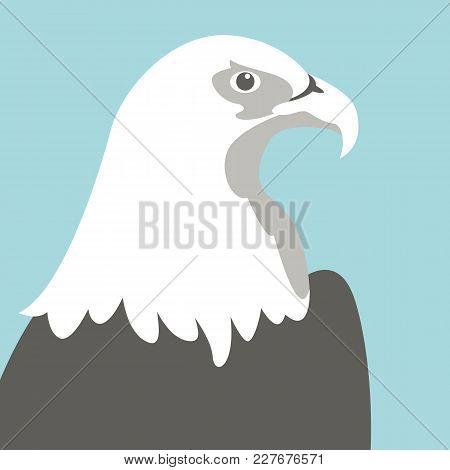 Eagle Head Vector Illustration Flat Style    Profile Side