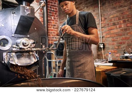 Black Worker Busy Pulling The Lever That Pours The Coffee Beans From The Roaster Over To A Drying Tr