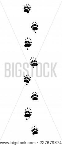 Badger Tracks. Typical Footprints With Long Claws - Isolated Black Icon Vector Illustration On White