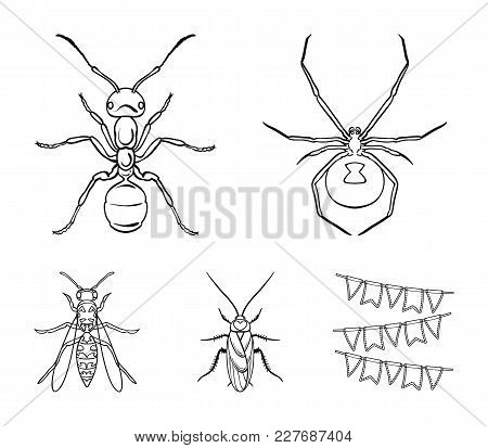 Spider, Ant, Wasp, Bee .insects Set Collection Icons In Outline Style Vector Symbol Stock Illustrati
