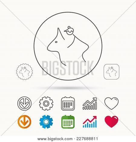 Horseback Riding Icon. Jockey Rider Sign. Horse Sport Symbol. Calendar, Graph Chart And Cogwheel Sig