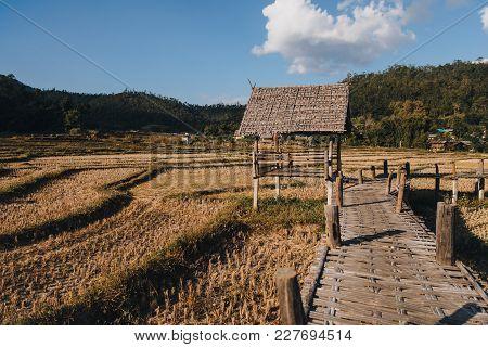 Wooden Footbridge Through Agricultural Field At Pai, Thailand
