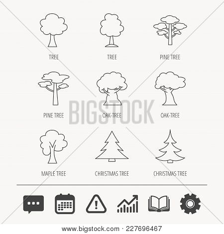 Pine Tree, Maple And Oak Icons. Christmas Trees Linear Signs. Forest Trees Flat Line Icons. Educatio