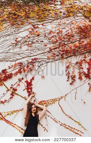 Luxurious Attractive Girl Posing Against The Background Of An Unusual Wall, Enjoying A Rich Life And
