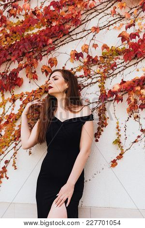 A Luxurious Sexy Woman In A Black Dress Enjoys A Rich Life And Leisure, Posing Near An Unusual Wall
