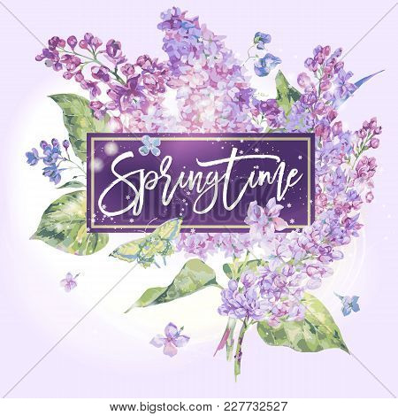 Vector Floral Spring Greeting Card, Blooming Branch Of Lilac, Butterfly. Nature Botanical Illustrati
