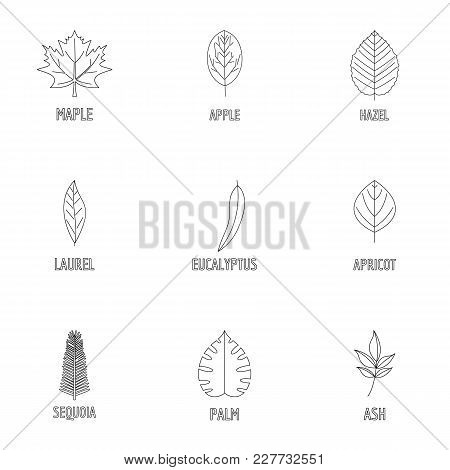 Leaf Pattern Icons Set. Outline Set Of 9 Leaf Pattern Vector Icons For Web Isolated On White Backgro