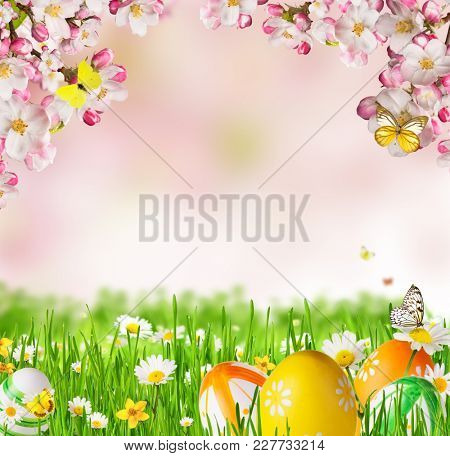 Idyllic spring meadow with Easter eggs and butterflies with blossoms. Spring concept with copyspace.