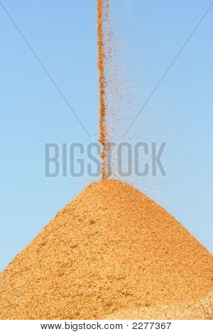 Pouring Woodchips Blue Sky