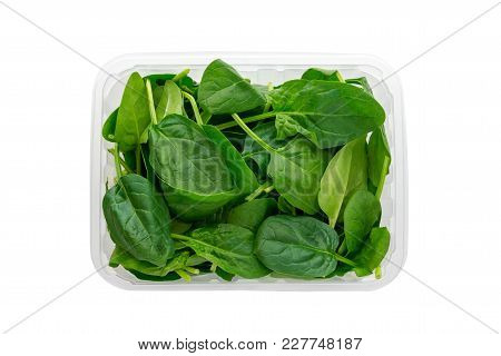 Green Spinach In A Plastic Container. Spinach Leaves In A Container From A Shop Isolated On White Ba