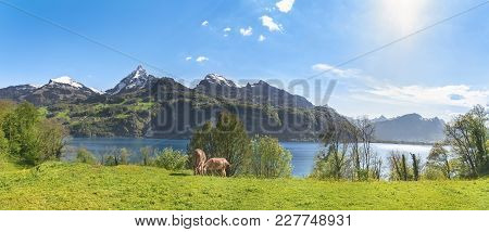 Swiss Alpine Scenery With The Alps - Beautiful Summer Panorama With The Swiss Alps Mountains, The Wa