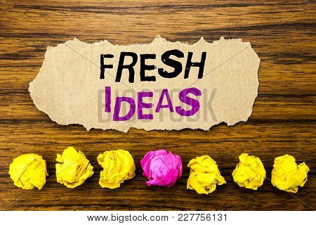 Handwriting Text   Fresh Ideas. Concept For Thinking Inspiration Inspire Creativity Written On Stick