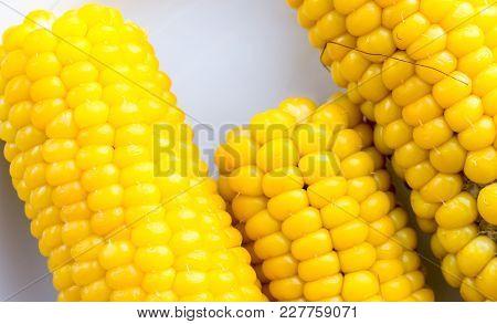 The yellow nature corn background.