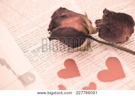 The Dried Rose And Red Heart Paper Put On Dictionary Book With The Word Love In Focus With Vintage S
