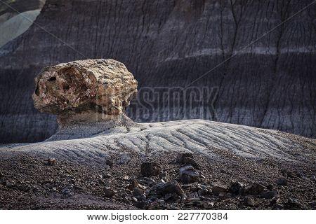 Petrified Log Eroding Out Of Badlands At Painted Desert National Park In Arizona Usa