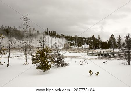 Landscape With Castle Geyser In Upper Geyser Basin, Yellowstone National Park