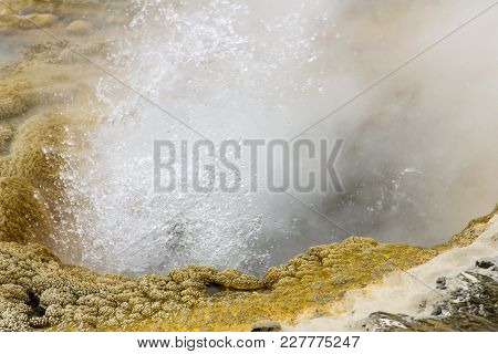 Close Up Of Bubbles And Steam In Erupting Geyser In Upper Geyser Basin, Yellowstone National Park