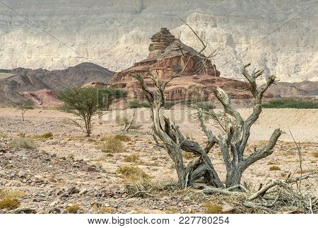 Geological Nature Park Timna Combines Beautiful Scenery With Unique Geology, Variety Of Sport And Fa