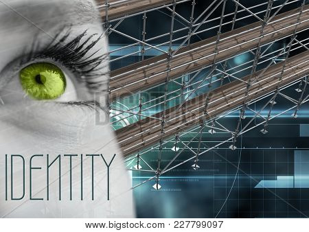 Digital composite of Identity Text with 3D Scaffolding and eye over interface