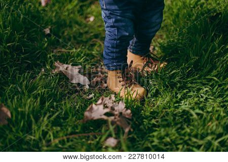 Close Up Of Legs Traveler Kid Boy In Jeans, Yellow Boots In Green Grass With Dry Leaves In Park. Chi