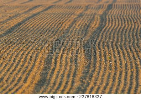 Newly Furrowed Natural Farmland With Furrows In Morning Sunlight