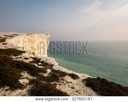 Chalk Cliffs Of The South Downs, East Sussex, England
