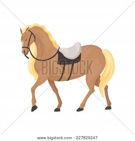 Thoroughbred Horse, Equestrian Professional Sport Vector Illustration On A White Background