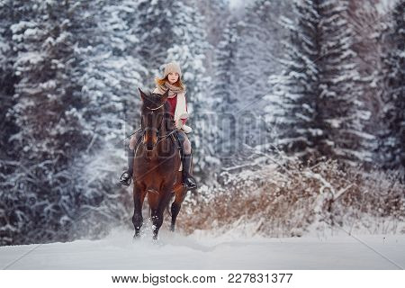 Rider Young Girl Jumps Over Snow On Brown Horse Over Winter Forest