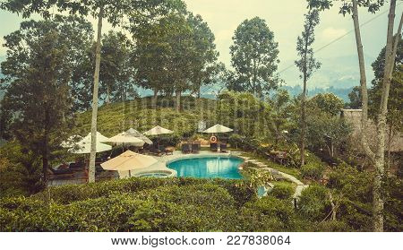 Ella, Sri Lanka - Jan 2, 2017: Ecological Hotel With Swimming Pool Surrounded By Forest And Tea Plan