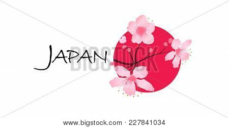 Sakura Cherry Blossoms On A Red Sun With Text