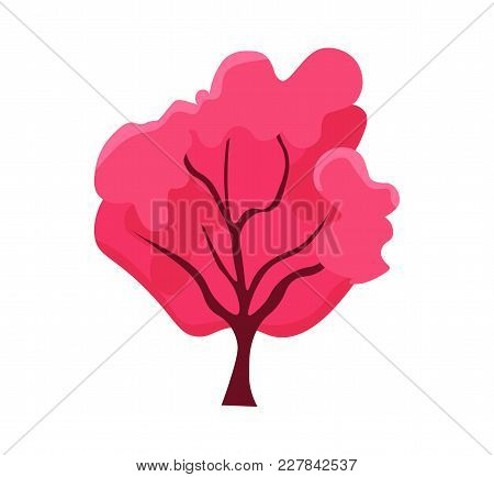 Cute Pink Sakura Tree With Twigs Cherry Blossoms. Japan Traditional Symbol. Blooming Asian Nature. S