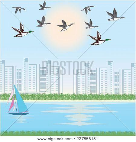 A Flock Of Ducks - Cityscape, River, Yacht - Art Illustration Vector. Spring Poster.