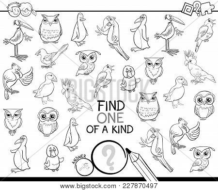 One Of A Kind Game With Birds Coloring Book