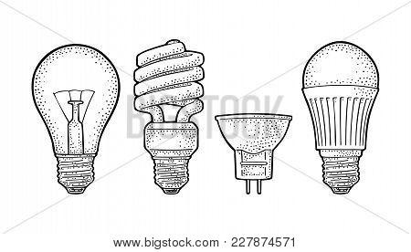 Evolution Type Electric Lamp. Light Incandescent Bulb, Halogen, Cfl And Led. Vector Vintage Black En