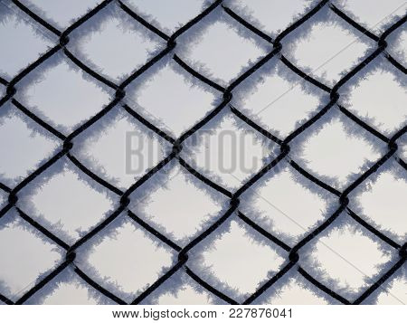 Background. Dark Grid With Snow And Frost On A Light Background.