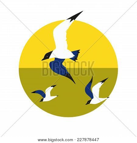 Seagull Flight Icon Set. Colorful Pop Art Minimalism Style. Flying Bird Logo. Seabird Marine Symbol