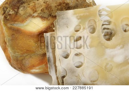 Butter Rot And Cheese Rot On White Background