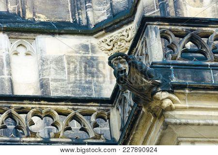 Gurgulia. The St. Vitus Cathedral. Prague. Czech Republic.